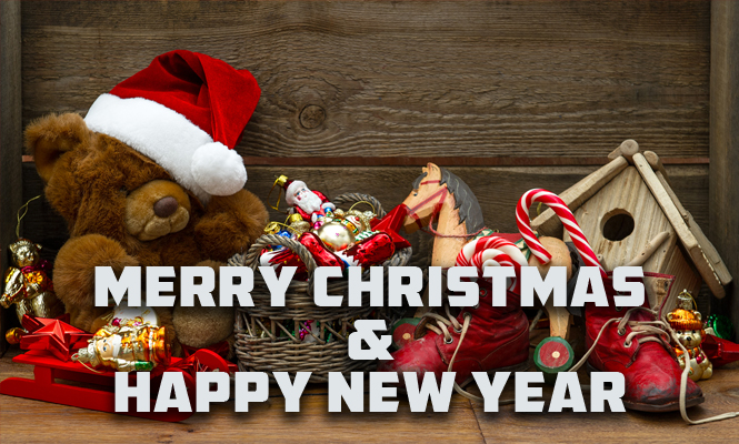 Christmas and new year 2015 gift ideas